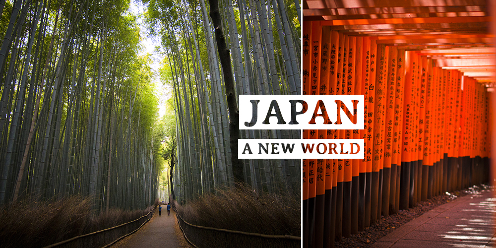 JAPAN through the eyes of photography
